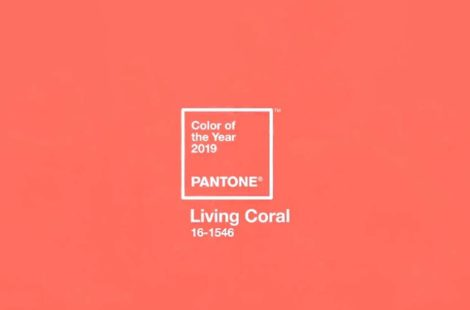Pantone Launches its Color of the Year and Hosbo Echoes